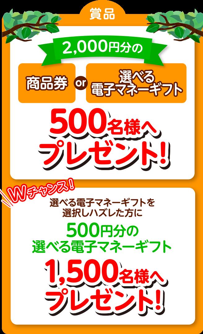 500名様へプレゼント!
